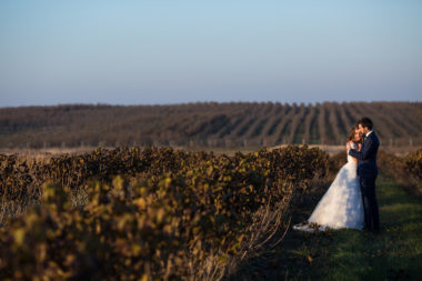 Fairytale romantic couple of newlyweds hugging at sunset in vine